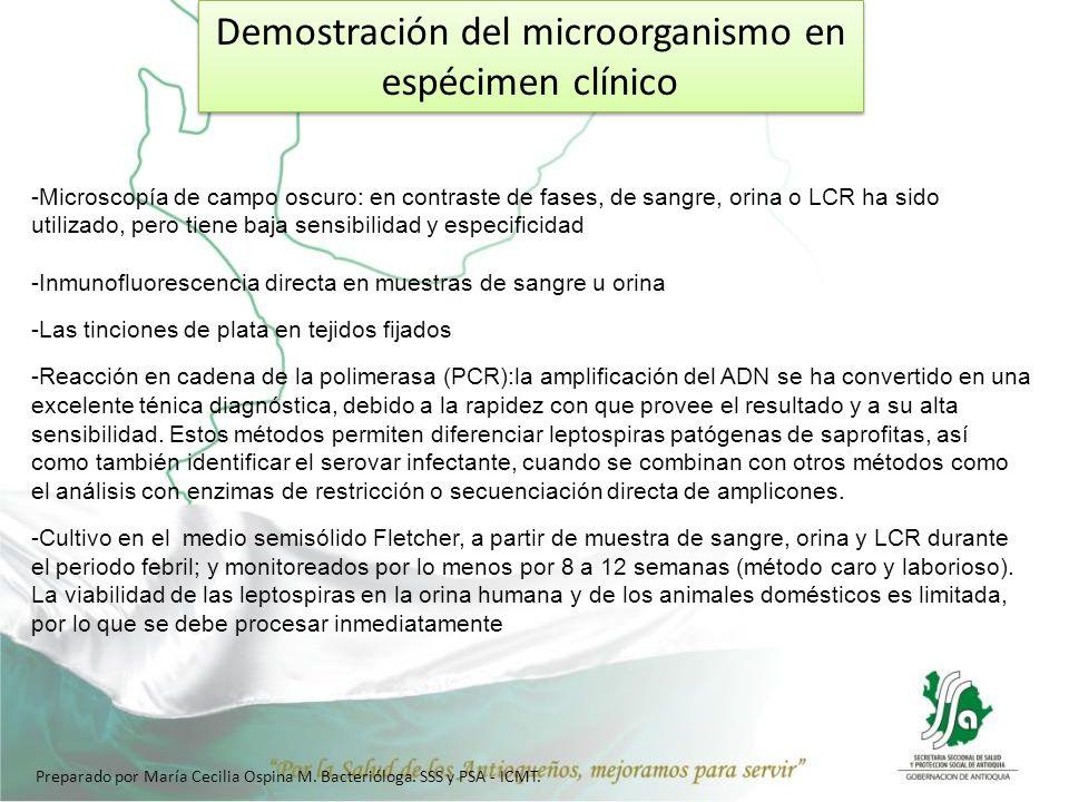 Demostración del microorganismo en espécimen clínico