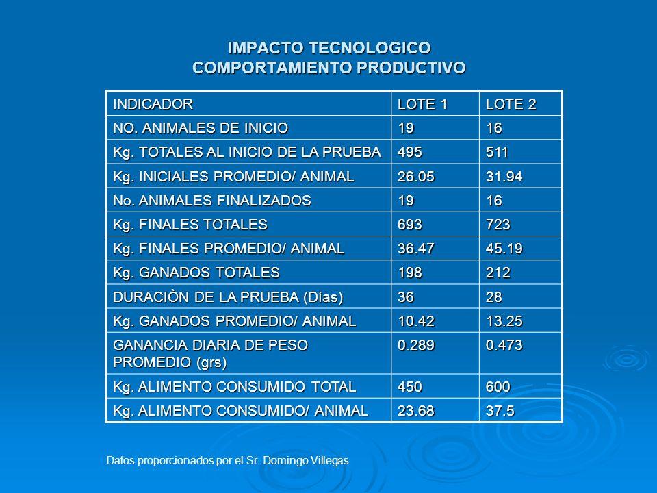 IMPACTO TECNOLOGICO COMPORTAMIENTO PRODUCTIVO