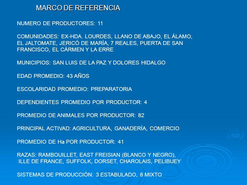 MARCO DE REFERENCIA NUMERO DE PRODUCTORES: 11