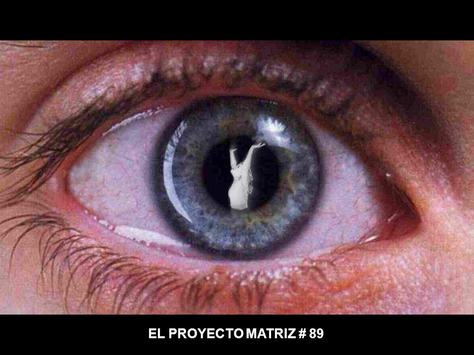 EL PROYECTO MATRIZ # 89