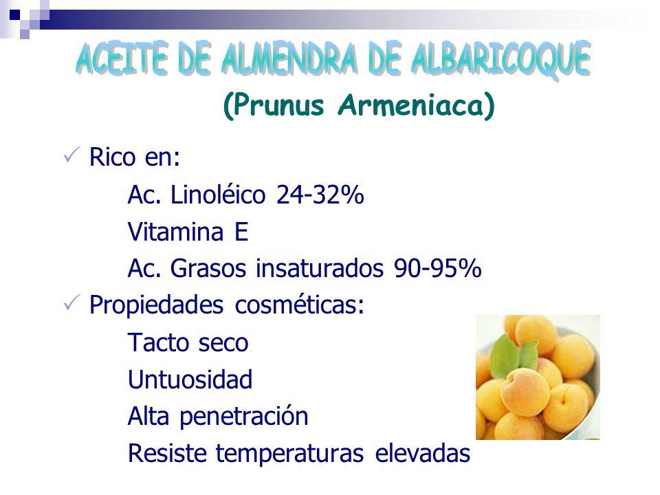 ACEITE DE ALMENDRA DE ALBARICOQUE