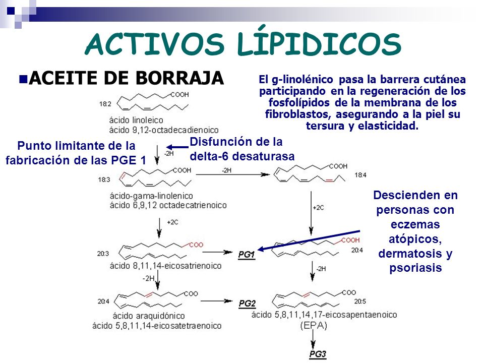 ACTIVOS LÍPIDICOS ACEITE DE BORRAJA