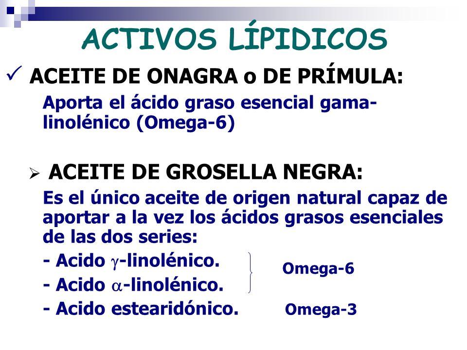 ACTIVOS LÍPIDICOS  ACEITE DE ONAGRA o DE PRÍMULA: