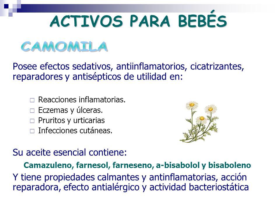 Camazuleno, farnesol, farneseno, a-bisabolol y bisaboleno