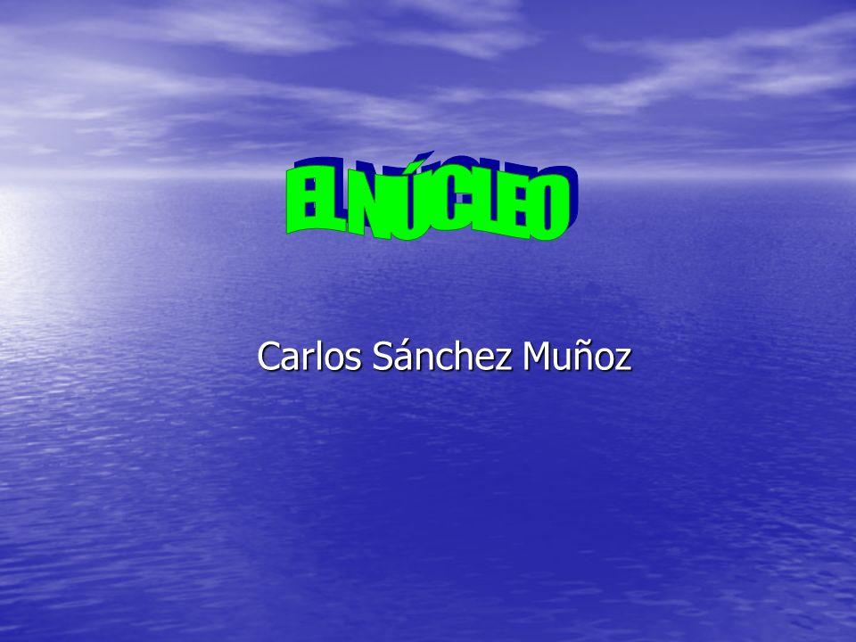 EL NÚCLEO Carlos Sánchez Muñoz