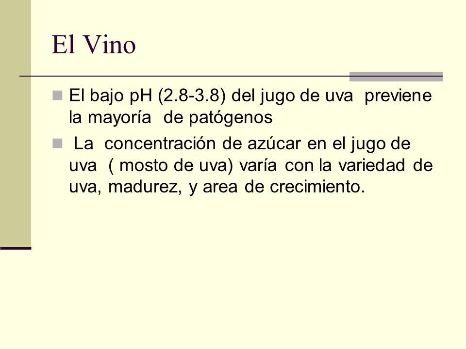 El Vino El bajo pH (2.8-3.8) del jugo de uva previene la mayoría de patógenos.