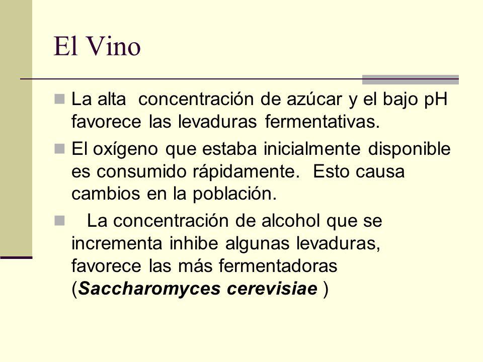 El Vino La alta concentración de azúcar y el bajo pH favorece las levaduras fermentativas.