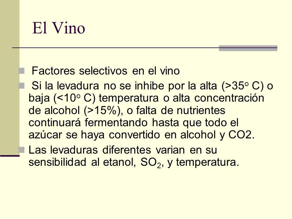 El Vino Factores selectivos en el vino