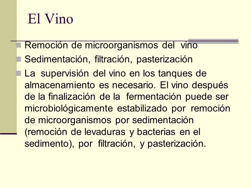 El Vino Remoción de microorganismos del vino