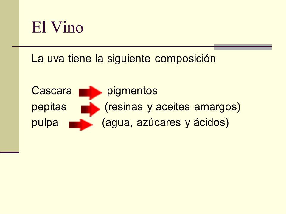 El Vino La uva tiene la siguiente composición Cascara pigmentos
