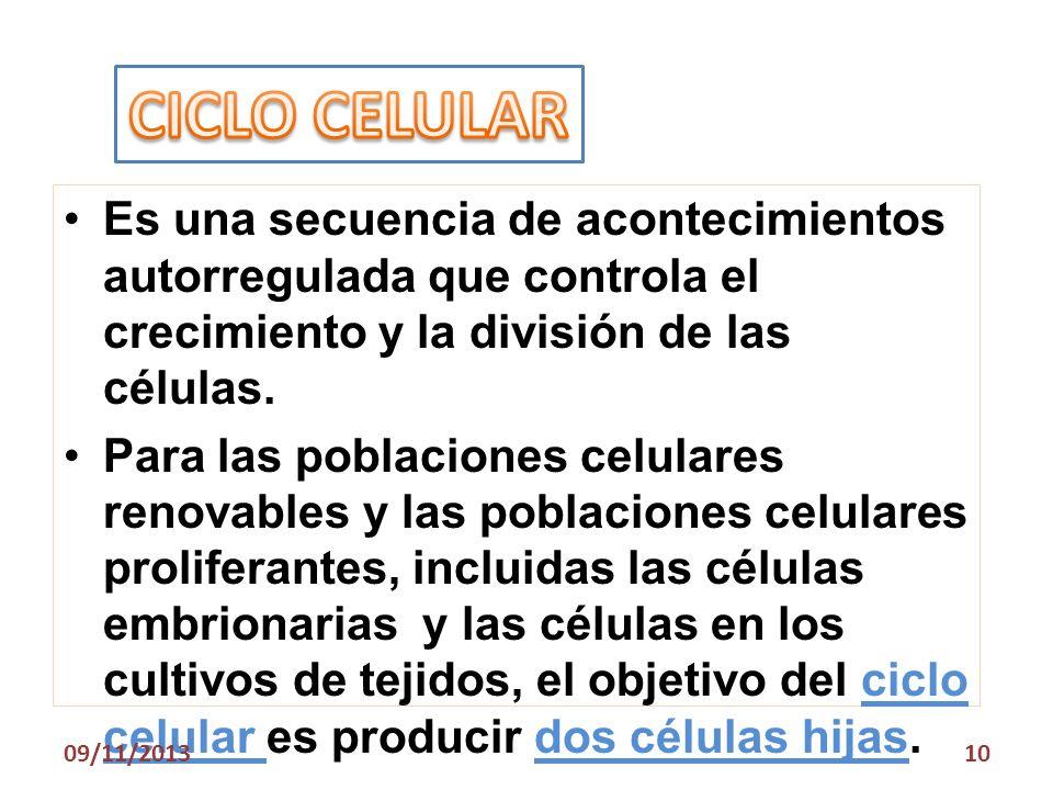 CICLO CELULAR Es una secuencia de acontecimientos autorregulada que controla el crecimiento y la división de las células.