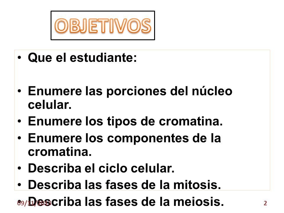 OBJETIVOS Que el estudiante: Enumere las porciones del núcleo celular.