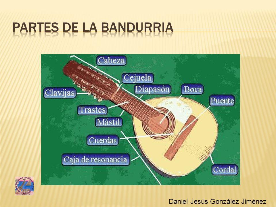 Partes de la bandurria Daniel Jesús González Jiménez
