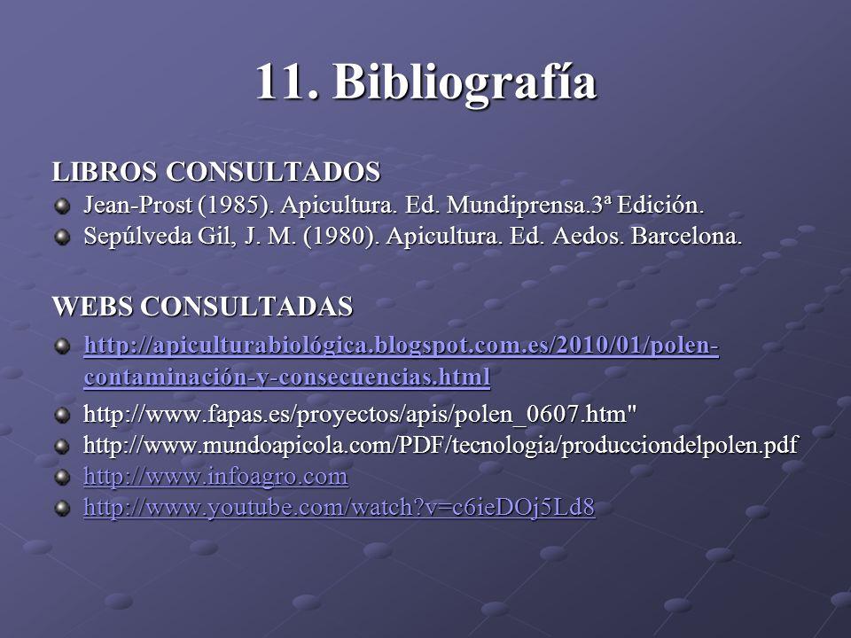 11. Bibliografía LIBROS CONSULTADOS WEBS CONSULTADAS