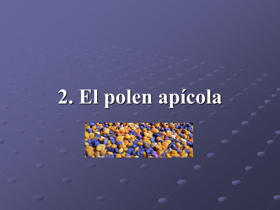 2. El polen apícola