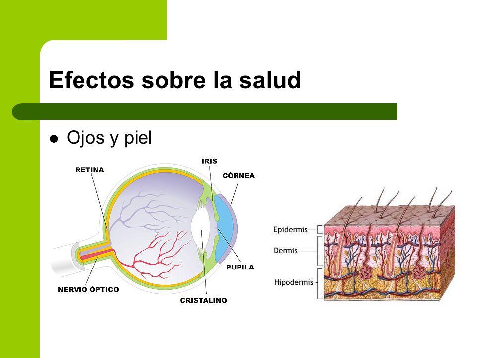 Efectos sobre la salud Ojos y piel
