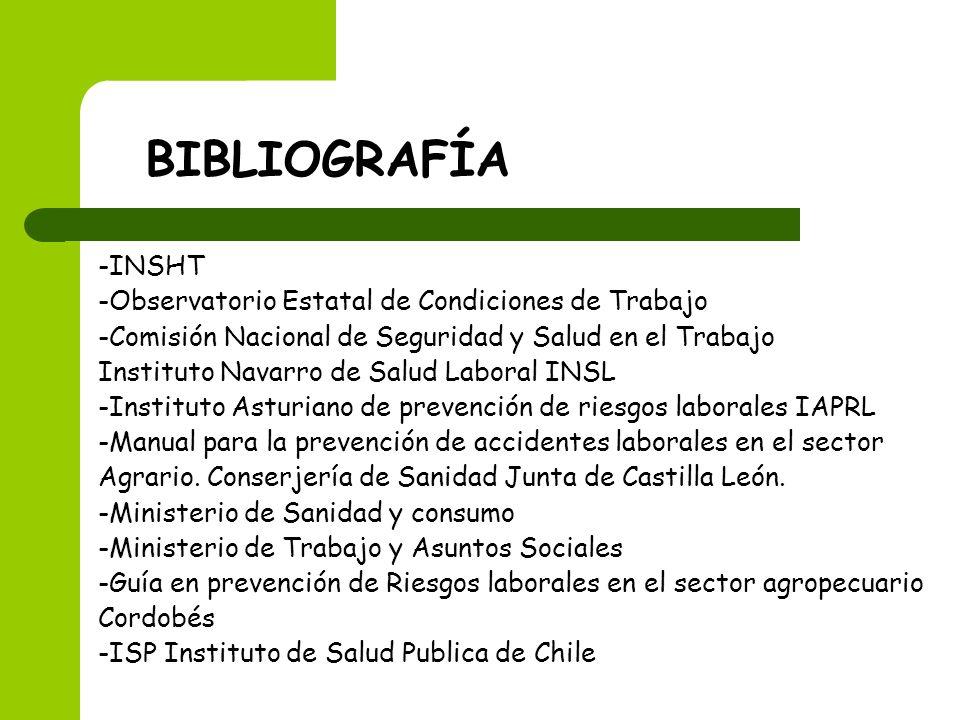 BIBLIOGRAFÍA -INSHT -Observatorio Estatal de Condiciones de Trabajo