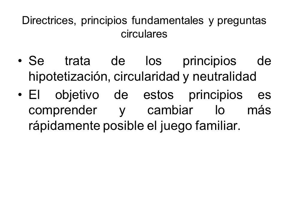 Directrices, principios fundamentales y preguntas circulares