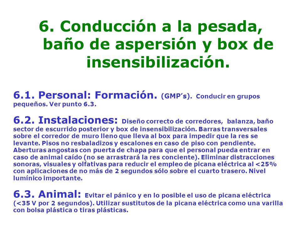 6. Conducción a la pesada, baño de aspersión y box de insensibilización.