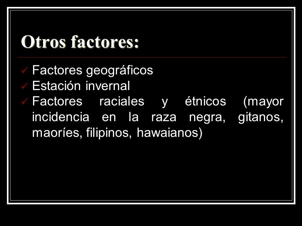 Otros factores: Factores geográficos Estación invernal