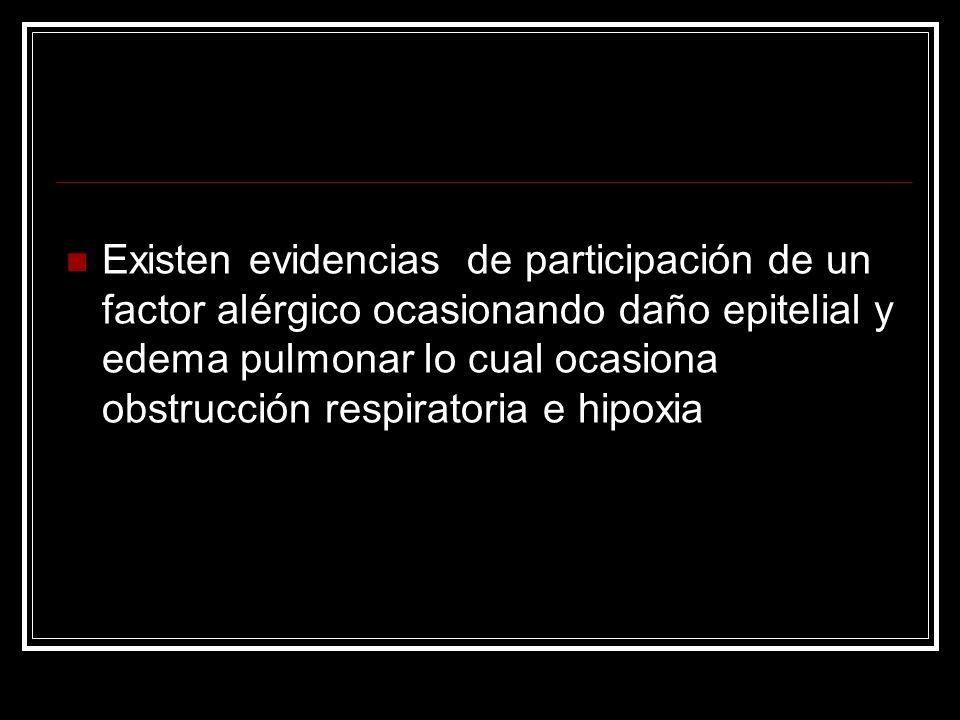 Existen evidencias de participación de un factor alérgico ocasionando daño epitelial y edema pulmonar lo cual ocasiona obstrucción respiratoria e hipoxia