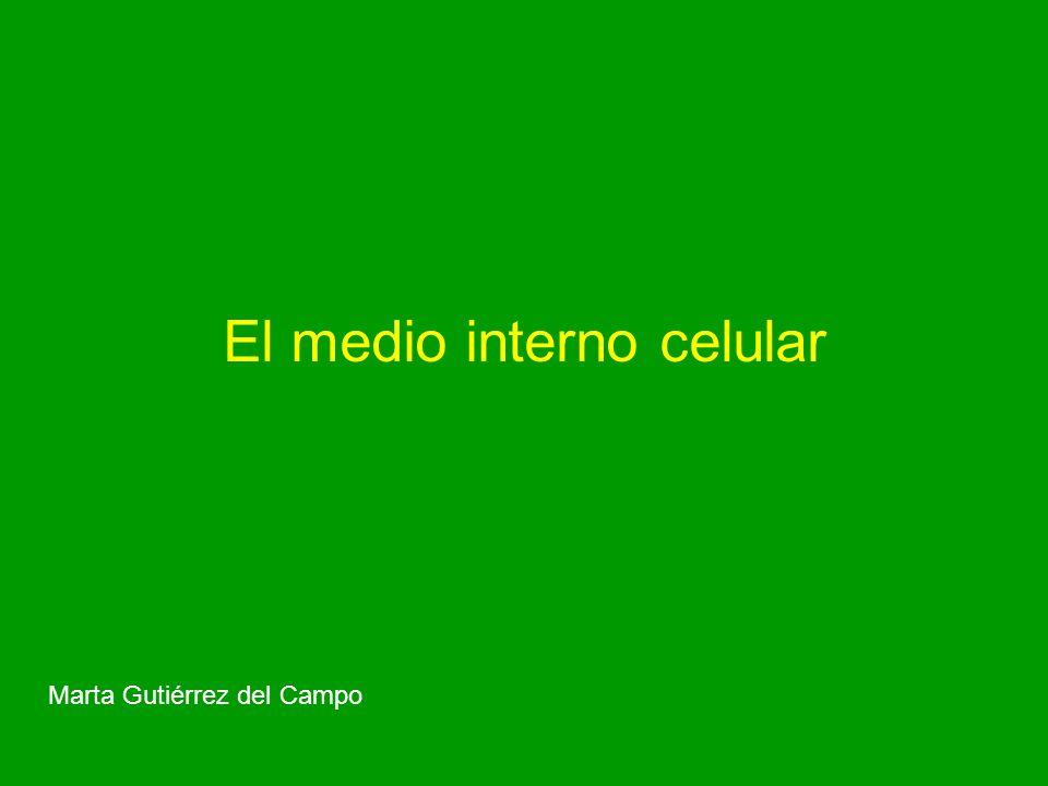 El medio interno celular
