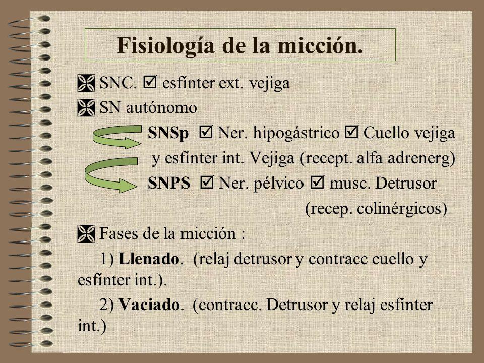 Fisiología de la micción.