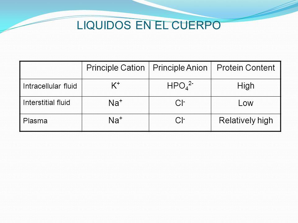 LIQUIDOS EN EL CUERPO Principle Cation Principle Anion Protein Content