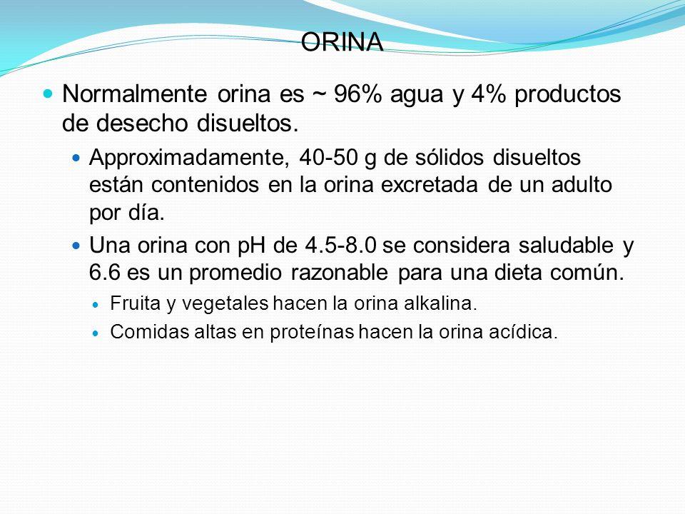 ORINA Normalmente orina es ~ 96% agua y 4% productos de desecho disueltos.