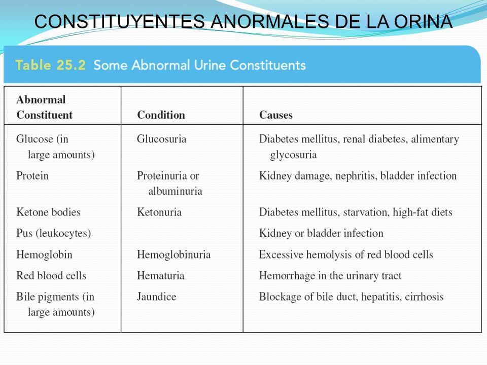 CONSTITUYENTES ANORMALES DE LA ORINA