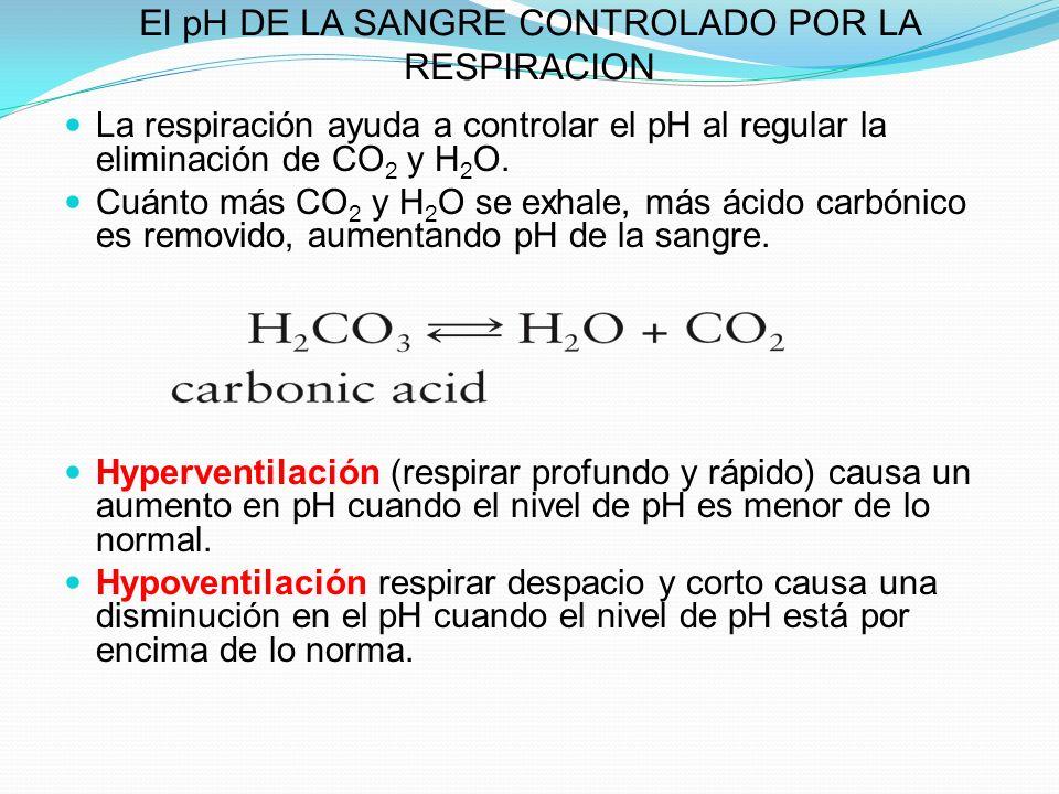 El pH DE LA SANGRE CONTROLADO POR LA RESPIRACION