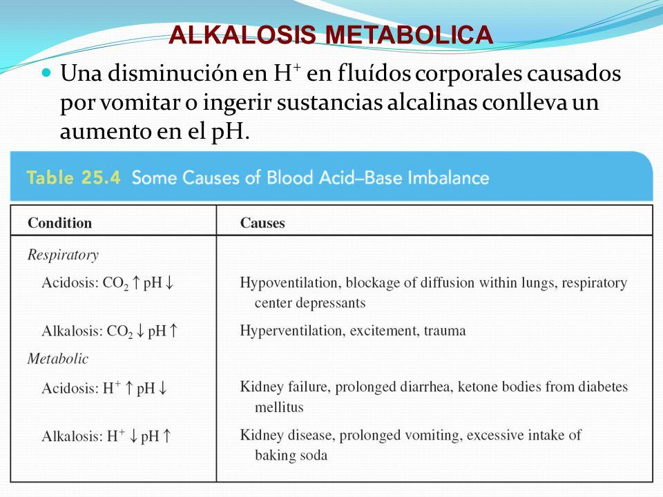 ALKALOSIS METABOLICA Una disminución en H+ en fluídos corporales causados por vomitar o ingerir sustancias alcalinas conlleva un aumento en el pH.