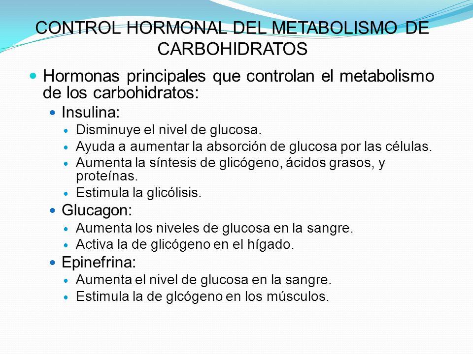 CONTROL HORMONAL DEL METABOLISMO DE CARBOHIDRATOS