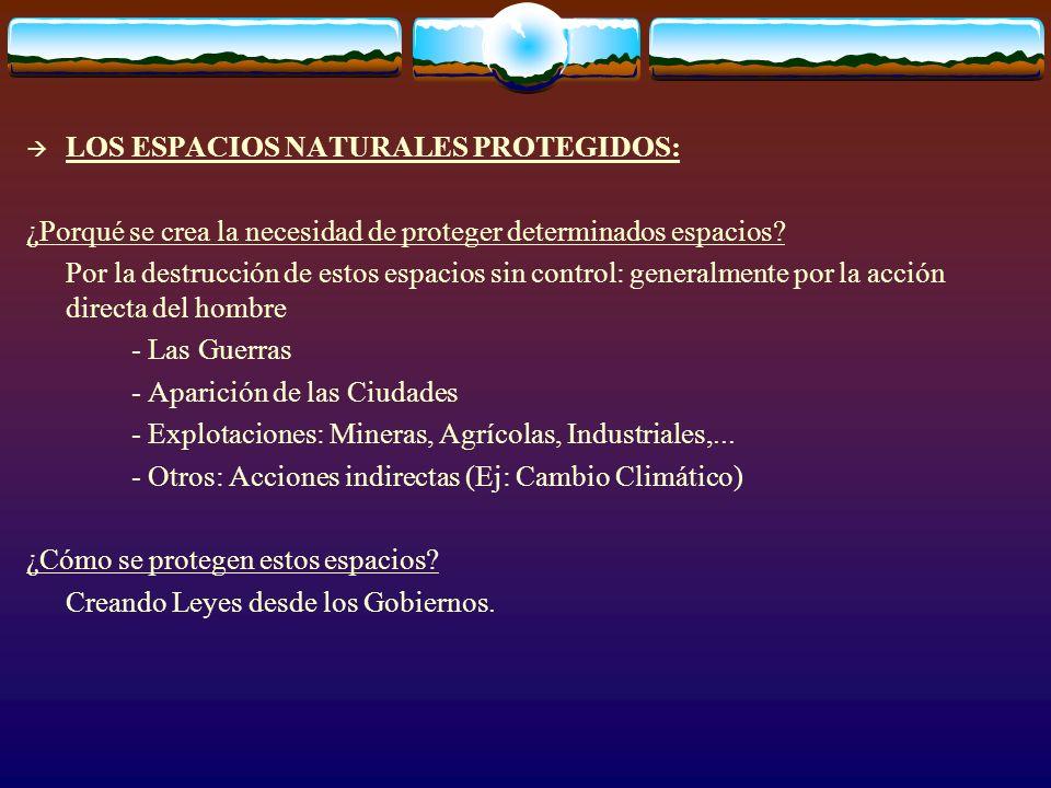 LOS ESPACIOS NATURALES PROTEGIDOS: