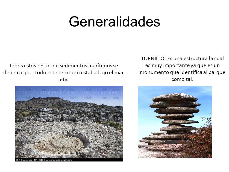 Generalidades TORNILLO: Es una estructura la cual es muy importante ya que es un monumento que identifica al parque como tal.