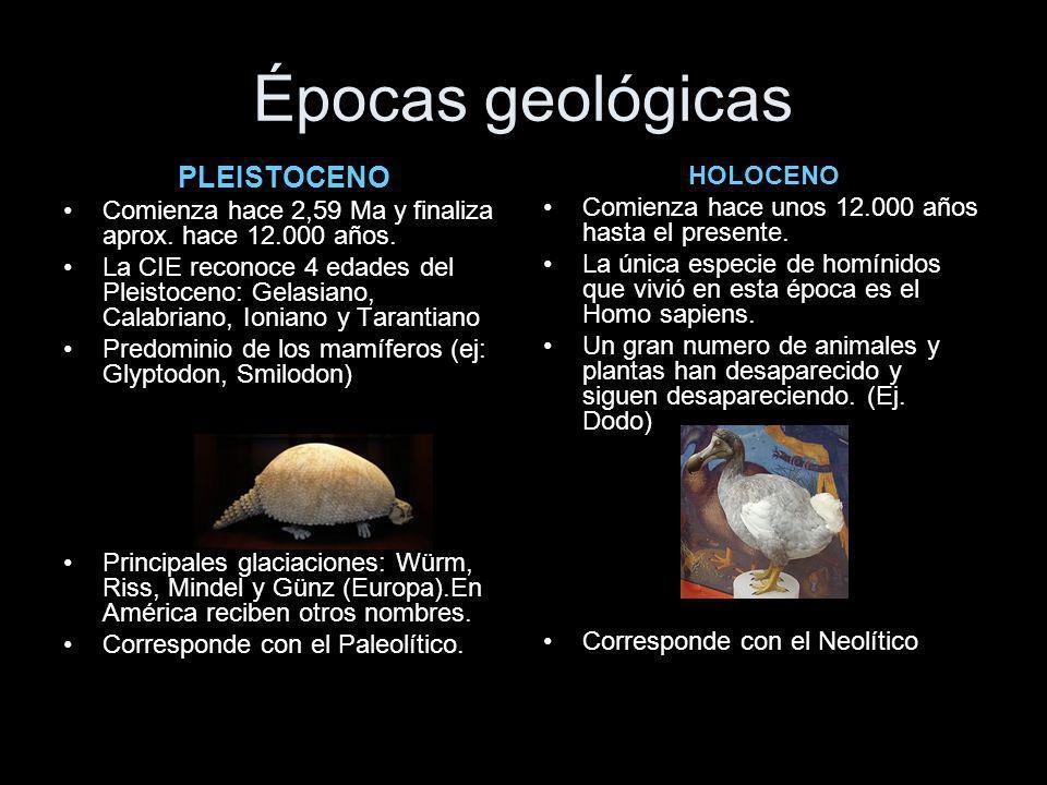 Épocas geológicas PLEISTOCENO HOLOCENO