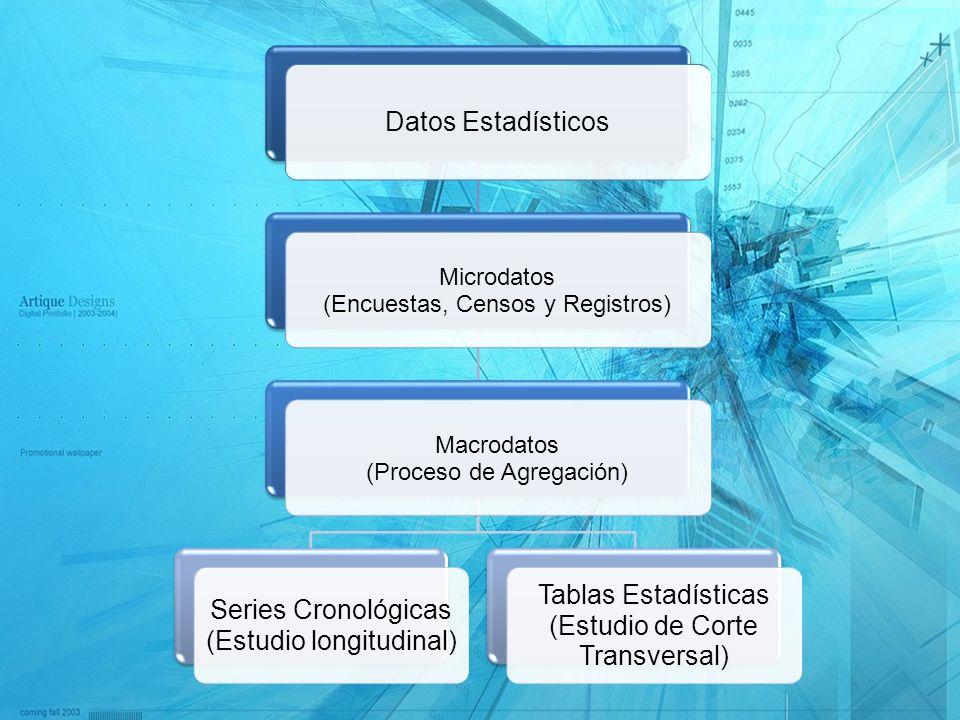 Datos Estadísticos Microdatos Macrodatos