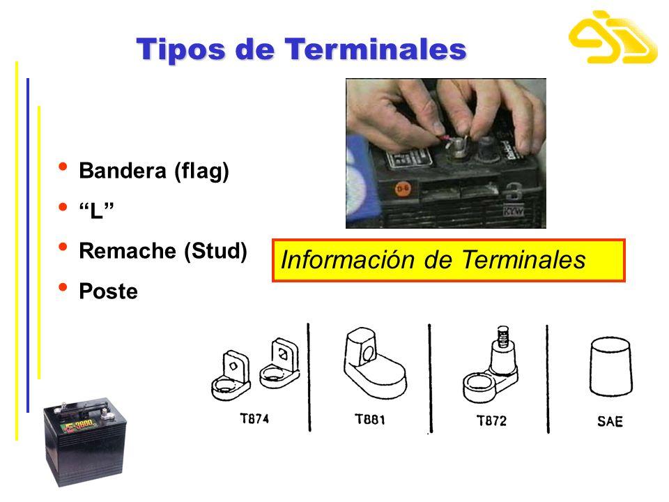 Tipos de Terminales Información de Terminales Bandera (flag) L