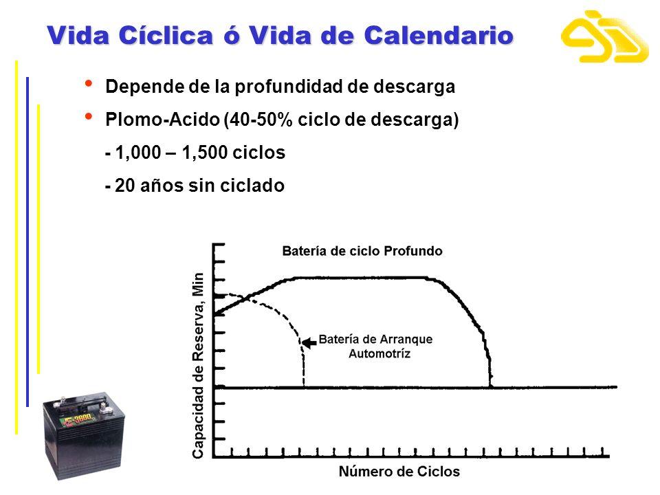 Vida Cíclica ó Vida de Calendario