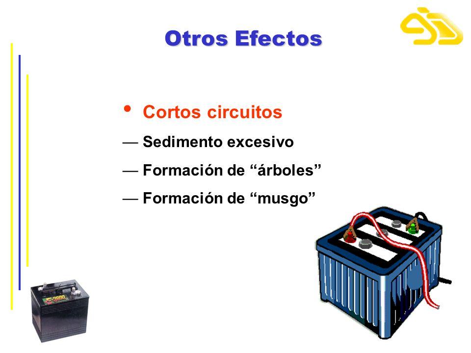 Otros Efectos Cortos circuitos Sedimento excesivo