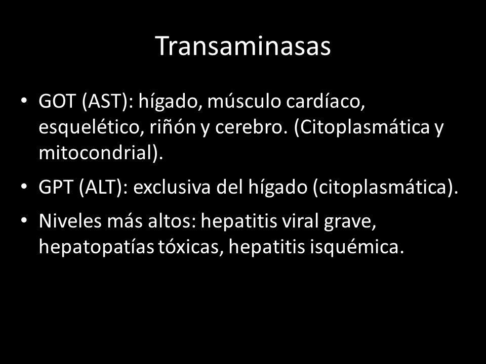 Transaminasas GOT (AST): hígado, músculo cardíaco, esquelético, riñón y cerebro. (Citoplasmática y mitocondrial).