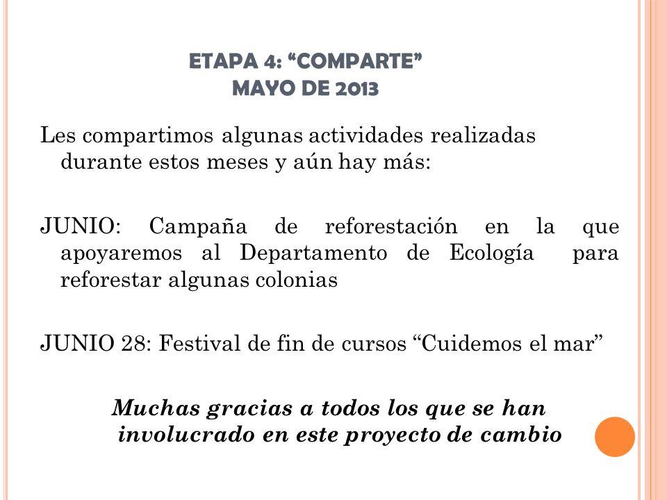 ETAPA 4: COMPARTE MAYO DE 2013