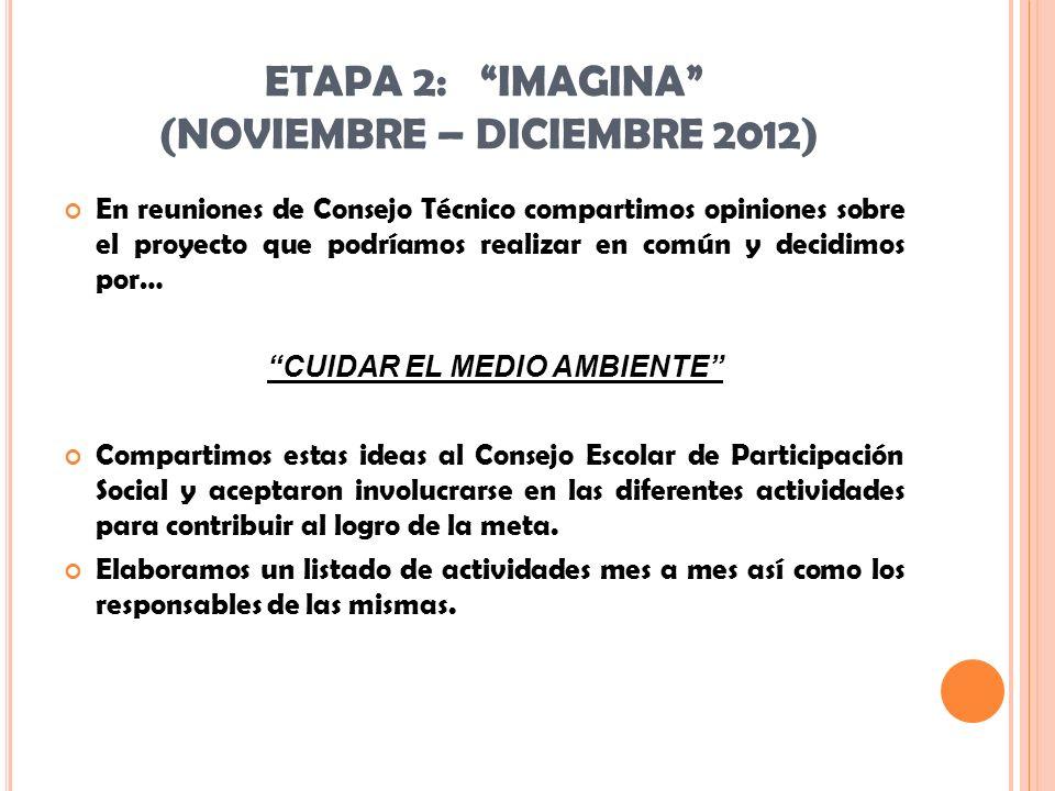 ETAPA 2: IMAGINA (NOVIEMBRE – DICIEMBRE 2012)