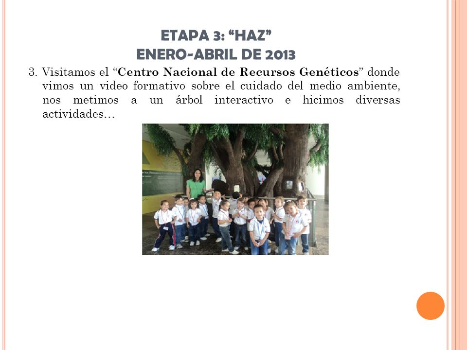 ETAPA 3: HAZ ENERO-ABRIL DE 2013