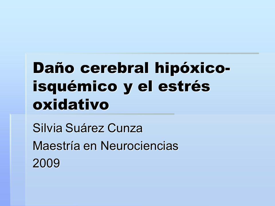 Daño cerebral hipóxico-isquémico y el estrés oxidativo