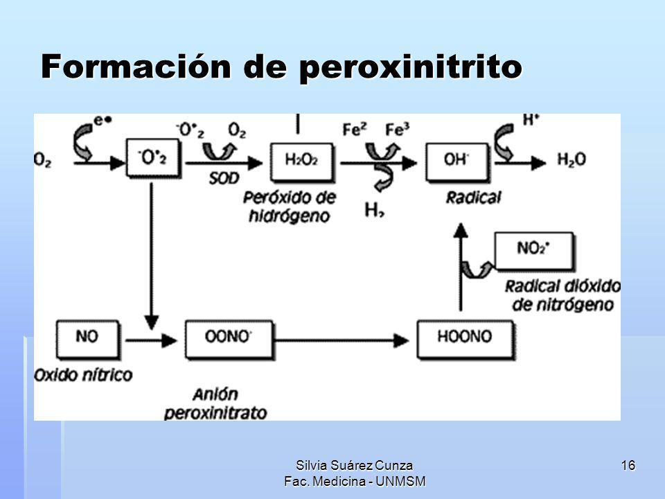Formación de peroxinitrito