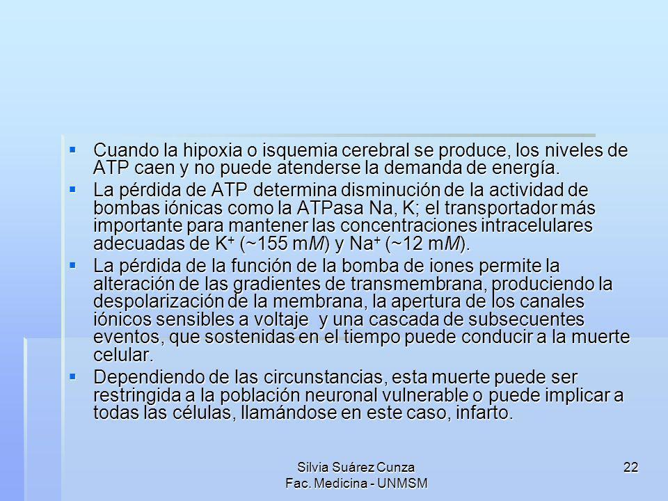 Silvia Suárez Cunza Fac. Medicina - UNMSM