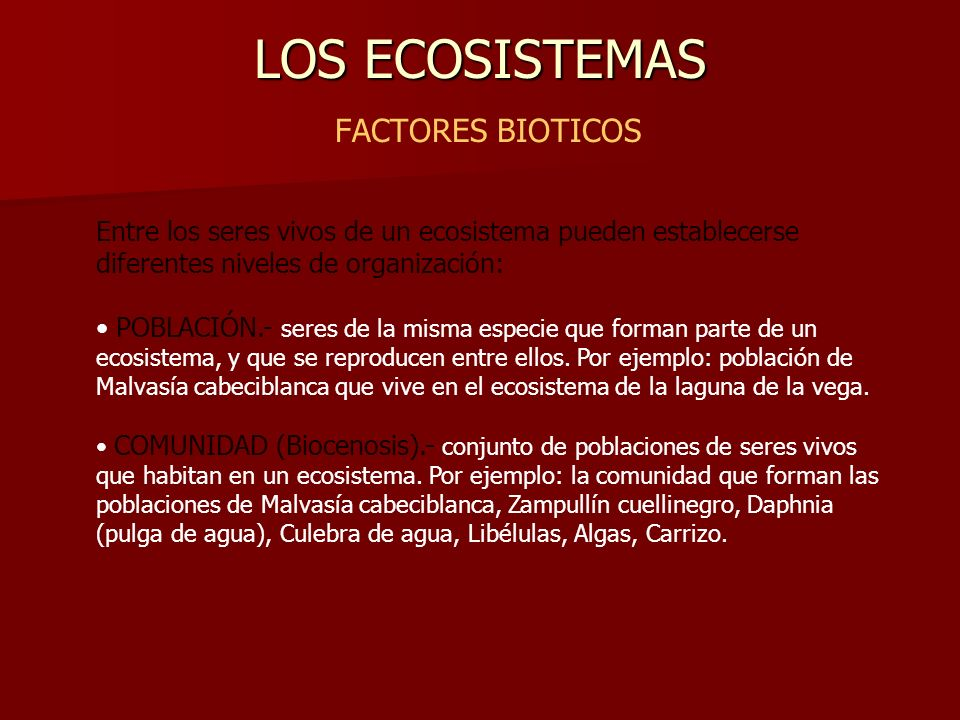 LOS ECOSISTEMAS FACTORES BIOTICOS
