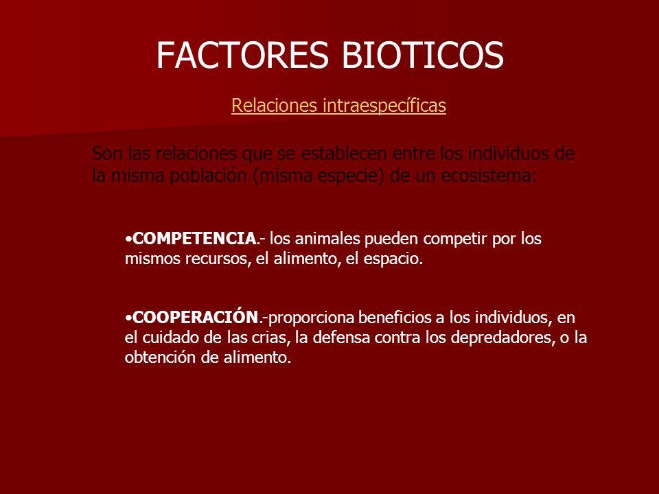 FACTORES BIOTICOS Relaciones intraespecíficas