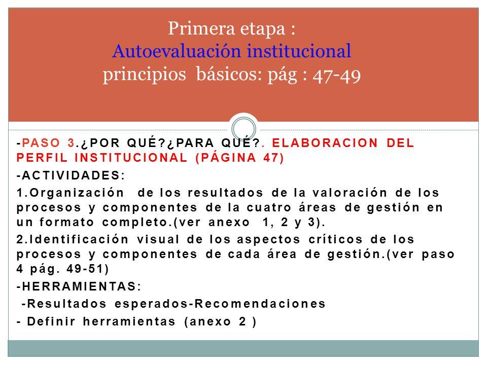 Primera etapa : Autoevaluación institucional principios básicos: pág : 47-49